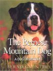 Click link to order Bernese Mountain Dog: Dog of Destiny