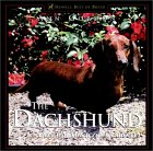 Click link to order Dachshund, Dog for Town and Country