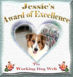 Thank you, Jessie, for this handsome Award of Excellence!