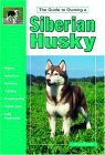 Click link to order Guide to Owning a Siberian Husky