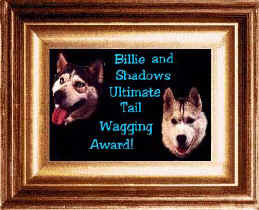Thanks, Billie and Shadow, for honoring WorkingDogWeb.com!