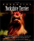 Click link to order The Essential Yorkshire Terrier